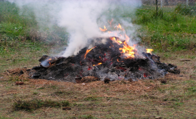 Best Burning Practices