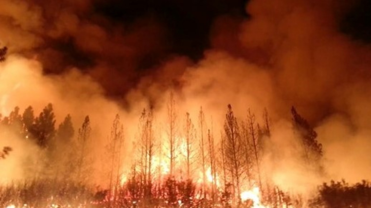 Wildfire Season Community Town Halls